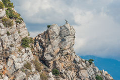 Aurora crag in Crimean mountains near Yalta city Royalty Free Stock Image