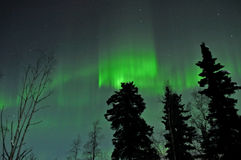 Aurora d'Alasca Immagine Stock