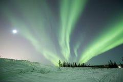 Aurora in Fairbanks. Alaska during Winter Royalty Free Stock Images