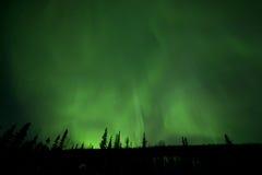 Aurora from the horizon. In Alaska Stock Image