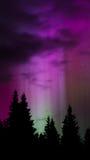 Aurora Light 4. Green aurora sends vertical spotlights into the night sky Stock Photos