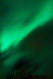 Aurora Lofoten Fotografía de archivo libre de regalías
