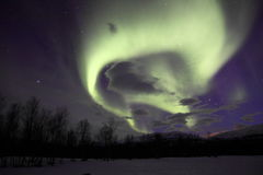 Aurora / Northern Light in Abisko, Sweden. Very beautiful purple, green northern light dancing in the sky. Green tea roll Stock Photos