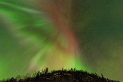 Aurora. The Northern Light corona opens up over trees with beautiful red, green and some purple to it Royalty Free Stock Photo