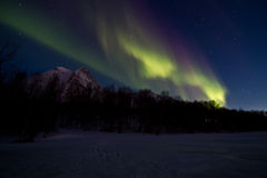 Aurora northern light over the winter sea ice Stock Photo