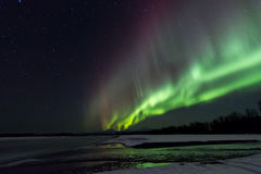 Aurora Over Denali Royalty Free Stock Images