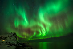 Aurora over Myrland royalty free stock images