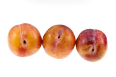 Aurora Plums Stock Photography