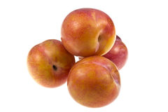 Aurora Plums Royalty Free Stock Images