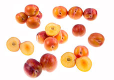 Aurora Plums Stock Image