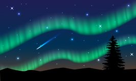 Aurora,polar lights,northern lights or southern lights is a natural light display in the Earth`s sky vector illustration
