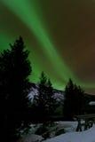 Aurora polaris. In the forrest, Norway Stock Photo