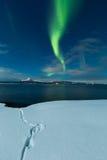 Aurora portrait landscape. Weak aurora and moonlit landscape covered in snow royalty free stock photo