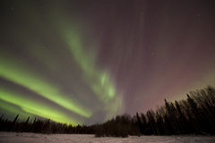 Aurora rossa e verde Fotografia Stock