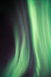Aurora sopra Lofoten, Norvegia Fotografie Stock Libere da Diritti