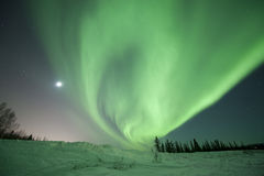 Aurora swirl near Fairbanks royalty free stock image