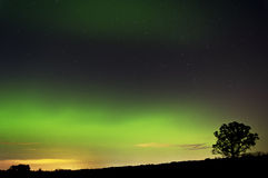 Aurora and Tree. Aurora from the geomagnetic storm on 10/24/11 Royalty Free Stock Image