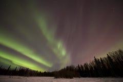 Aurora vermelha e verde Foto de Stock
