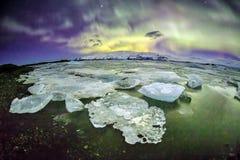 Auroral över glaciärlagun Jokulsarlon i Island royaltyfri bild