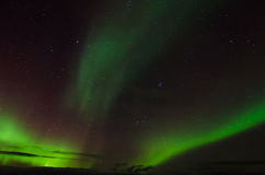 Auroras on a starry sky Royalty Free Stock Photos