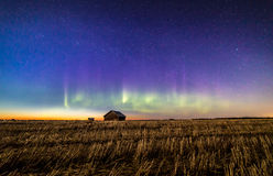 Auroras and stars. Appeared in the sky just after sunset in Finnish countryside Royalty Free Stock Images