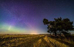 Auroras and stars. In Finnish countryside Stock Images