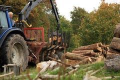 Aus dem Programm nehmen des Brennholzes. Herbstarbeiten Lizenzfreies Stockfoto