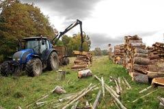 Aus dem Programm nehmen des Brennholzes. Herbstarbeiten Stockfotos