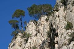 Aus Felsen heraus Stockfoto