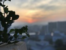 Aus Fokus-Sonnenuntergang heraus lizenzfreie stockbilder