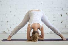 Ausarbeiten der schwangeren Frau, Yogahaltung tuend Lizenzfreies Stockbild