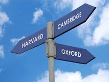 Ausbildung dilema Lizenzfreie Stockfotos