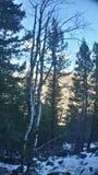Ausblick-Berg Lizenzfreie Stockbilder