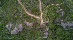 Ausblick-blaue Berge Australien Stockfoto