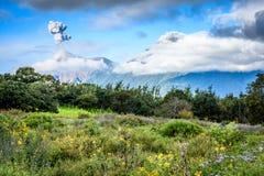 Ausbrechen des Vulkans u. der Wiese von Blumen, Guatemala stockbilder