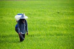 Ausbreitendes Düngemittel des Landwirts   Lizenzfreie Stockfotos