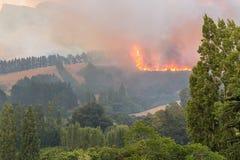 Ausbrennen des verheerenden Feuers der Steuerung Stockbild