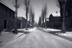 Auschwitz在冬天 库存照片