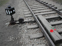 Auschwitz Imagem de Stock