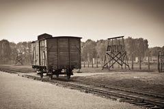 Auschwitz Immagini Stock Libere da Diritti