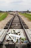 Auschwitz Fotografia Stock Libera da Diritti