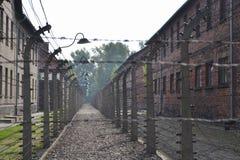 Auschwitz Arkivbilder