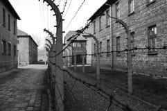 Auschwitz Stock Afbeeldingen
