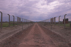 Auschwitz fotos de stock royalty free