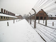 Auschwitz Stock Photo