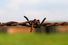 Auschwitz barbed wire fence Stock Photo