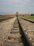 auschwitz birkenau fotografering för bildbyråer