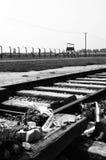 Auschwitz Birkenau Stock Afbeeldingen