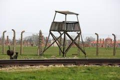 Auschwitz-Birkenau, Royaltyfri Fotografi