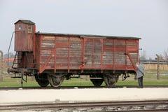 Auschwitz-Birkenau, Arkivbild